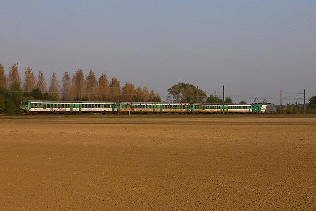 Trois verts pour la Roumanie - Vue de derrière