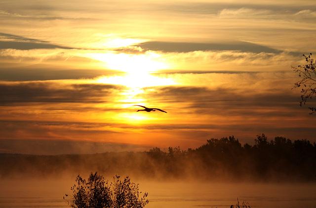 Le réveil de la nature