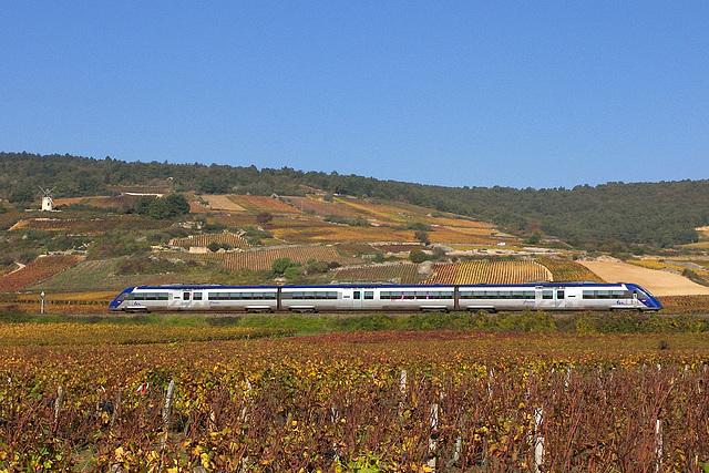 X 72500 dans les vignes