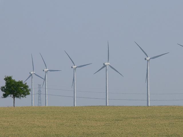 Windmühlen bei Aschères-le-Marché