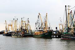 Fischerhafen auf Römö