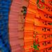 España en colores | Spain in colours