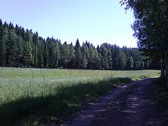 Photo06281207