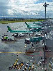 Aer Lingus - Maschinen