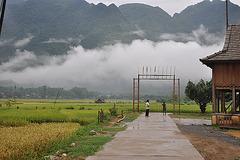 VALLEE DE MAI CHAU  VIETNAM