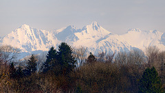 Les Alpes fribougeoises...