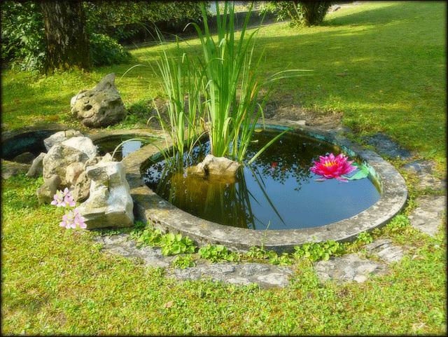 le jardin d'Alice aux pays des merveilles a qui je souhaite un joyeux Anniversaire