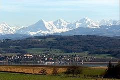 Lac de Morat et les Alpes