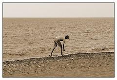 Pebbles 'n the Sea