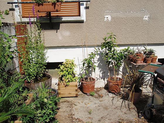 aménagement d'un coin de la terrasse 10897696.bbff2fa6.560