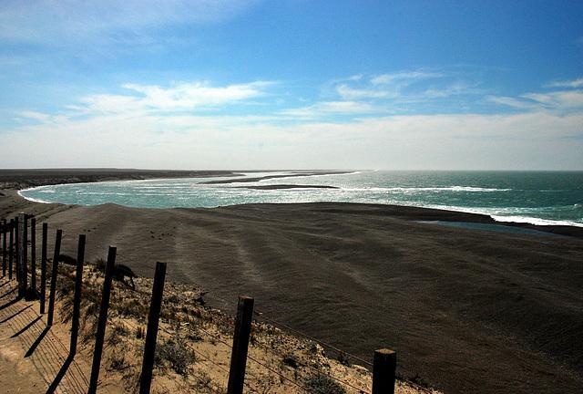 Peninsula Valdes. Argentina