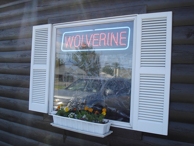 Wolverine window / Fenêtre Wolverine - Plattsburg NY. USA - 14 juin 2011.