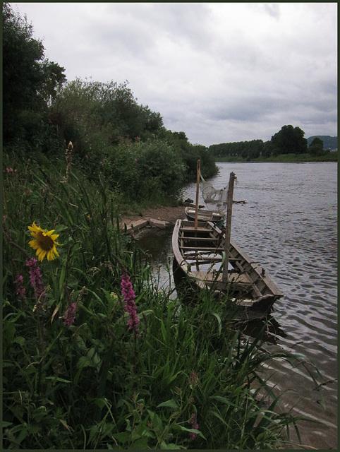 Fischerboote an der Weser