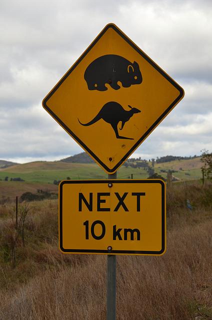 Australia. Road sign