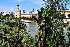 Guadalquivir en Sevilla