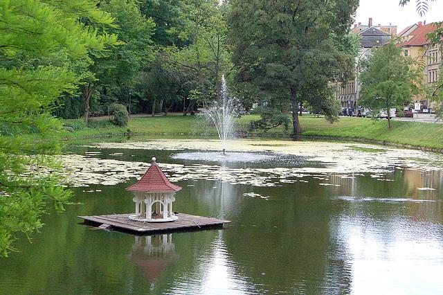 lago, anasodometo, fontano,