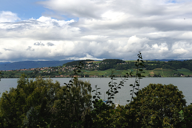 Le lac de Morat et le Mont-Vully