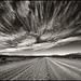 absorbing_sky_skew