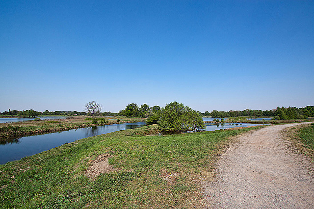 20110424 1313RWw [D-PB] Steinhorster Becken, Naturschutz