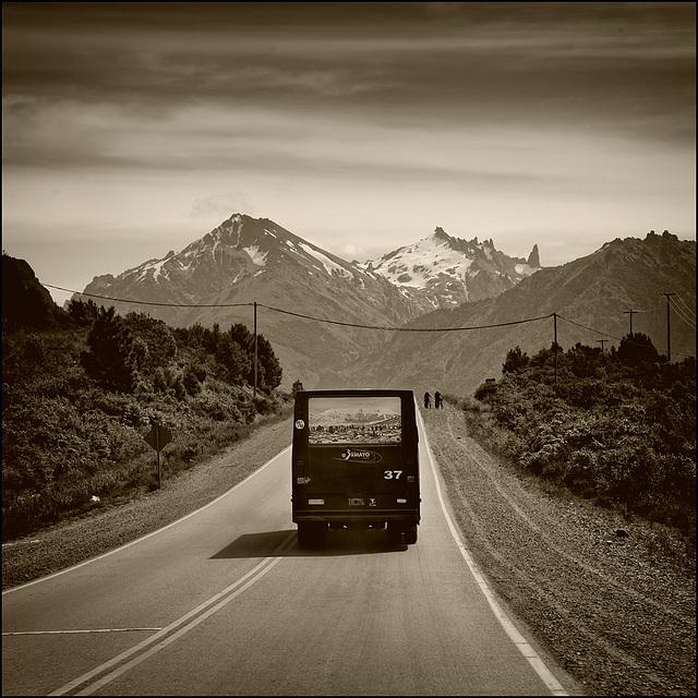 bus_tours