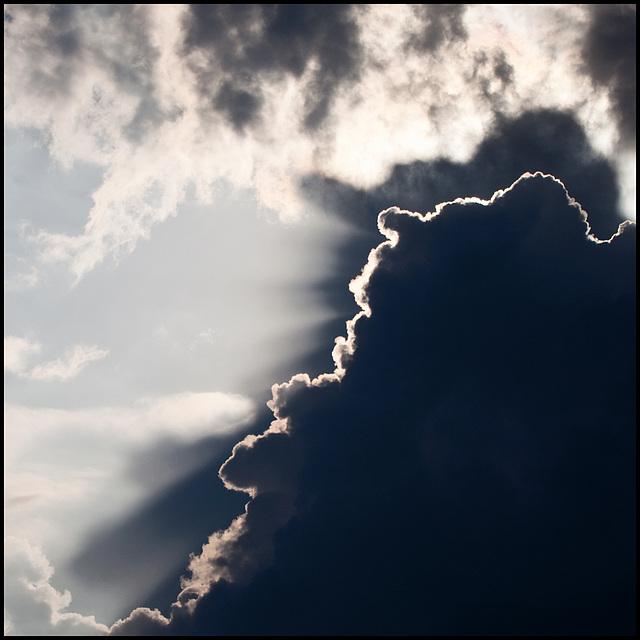 strange noses in the sky