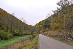 Chemin d'automne ..........sur fond noir :-))