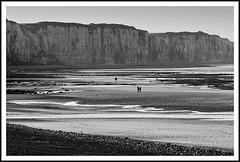 Marée basse à Veules les Roses (76)