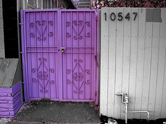 Great L.A. Walk (1601A)