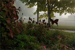 Spooky Foggy Morning