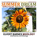 CDCover.SummerDream.Trance.September2011