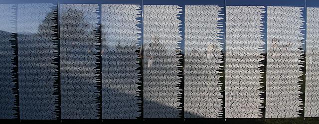 Vietnam Memorial Moving Wall (1489)
