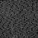 Vietnam Memorial Moving Wall (1500A)