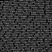Vietnam Memorial Moving Wall (1500B)