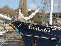 thalassa ( navire hollandais )