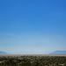 Black Rock Hot Springs View Of Black Rock City (0191)