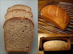 WGB Challenge #28: Whole Wheat and Sprouted Grain Bread