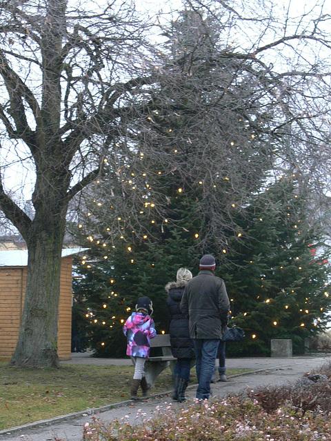 ein Spaziergang zum Weihnachtsmarkt