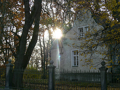 Herbst am Schlosspark