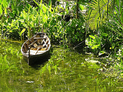 Garden with boat