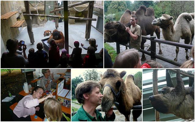 Zoo Dresden - Tag der offenen Tür 18.09.2011