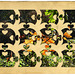 puzzle (pip)