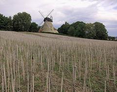 die Rodenberger Windmühle