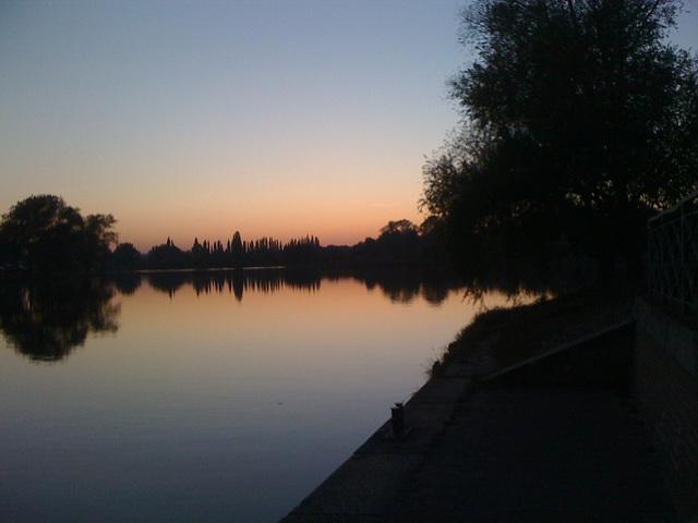 Bild 247