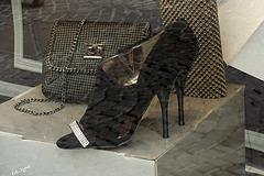 Les talons hauts d'Eve.....Lyne's high heels