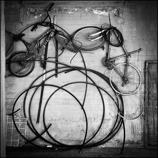 bicircles