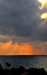 El sol se filtra hacia el mar
