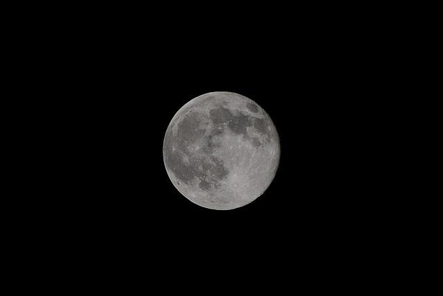 Lune du 13 novembre 2008