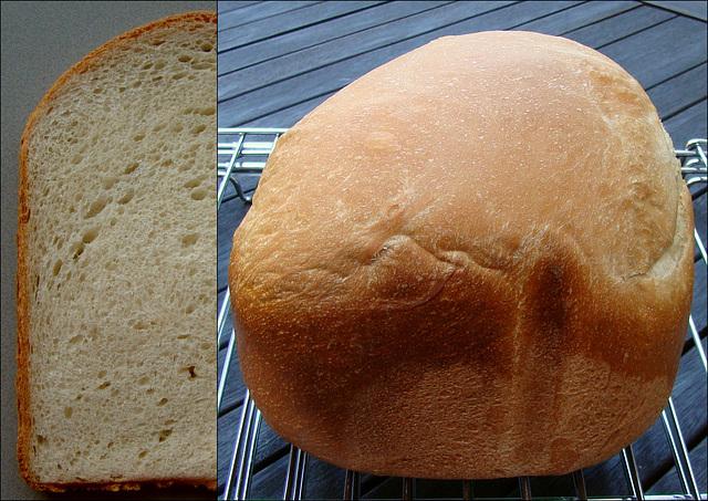 Milk and Honey White Bread