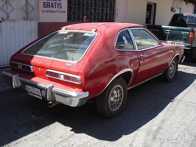 Red Pinto / Pinto rouge / Pinto rojo.