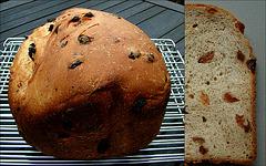 (J.S.31) Moutbrood